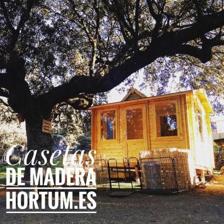 Caseta de madera Claudia de Palmako - Caseta jardín al Mejor Precio