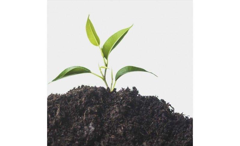 Bio-Fertilizantes 100% naturales