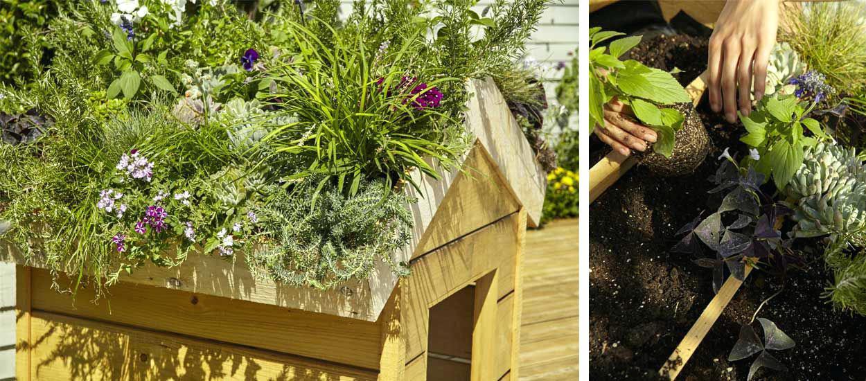 Caseta de madera para perros con techo vegetal